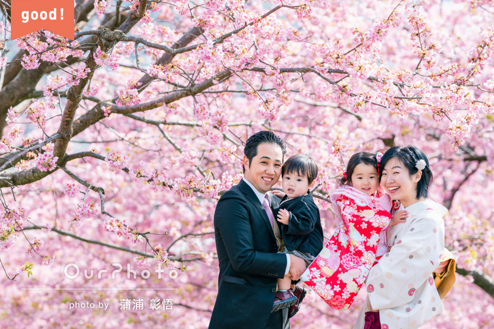 フォトギャラリー「いろいろな表情を撮って」河津桜と菜の花に囲まれた春の七五三前撮り