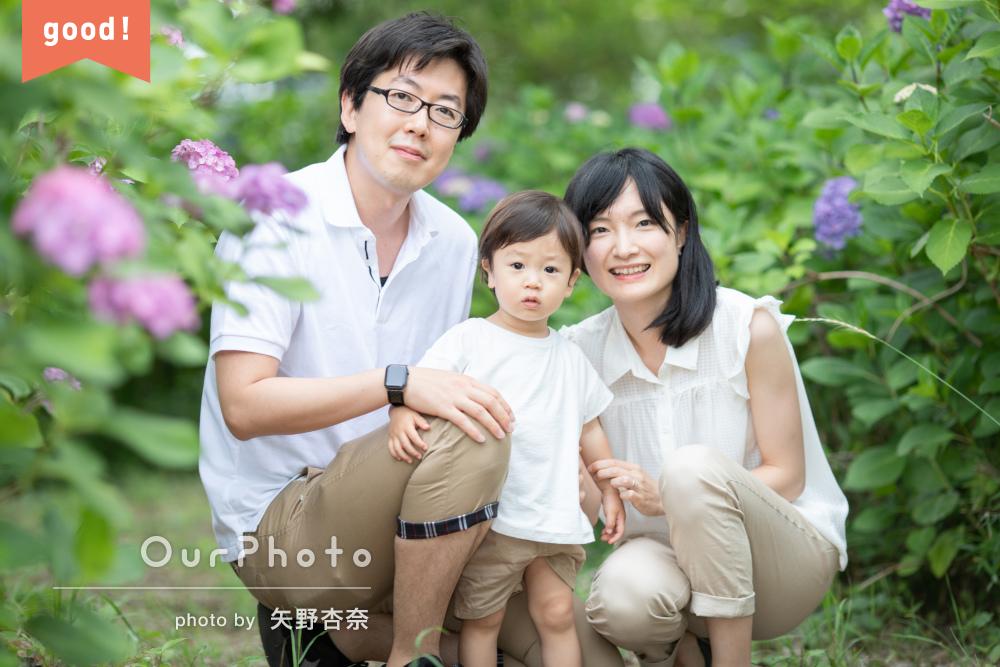 フォトギャラリー「紫陽花と家族写真」の撮影