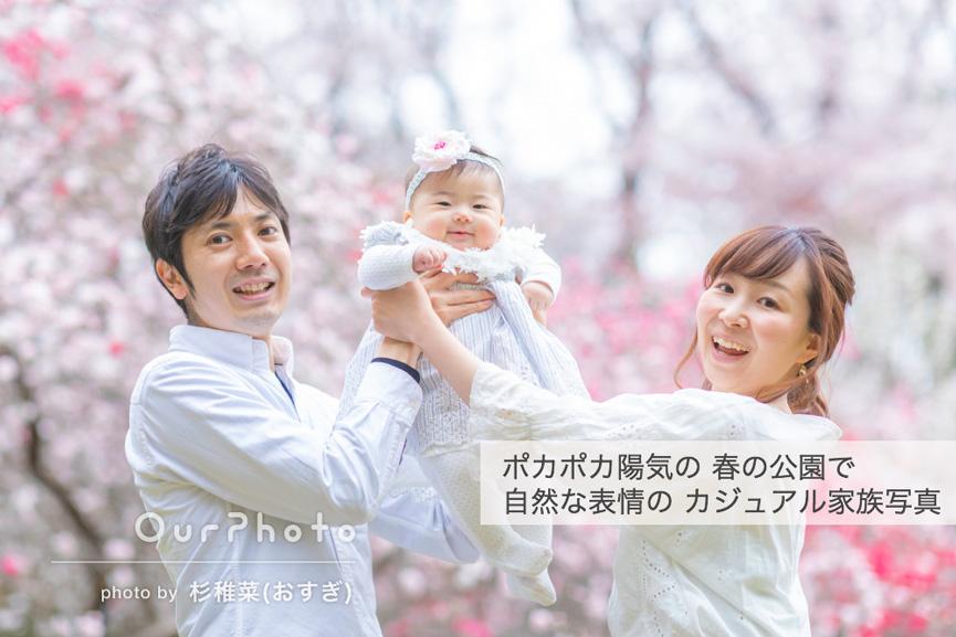 202001-02_sakura_2