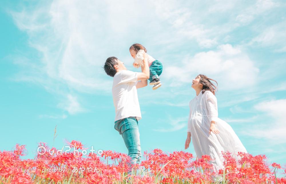 彼岸花が咲く中で天高く秋深まる!家族3人でのマタニティフォト撮影