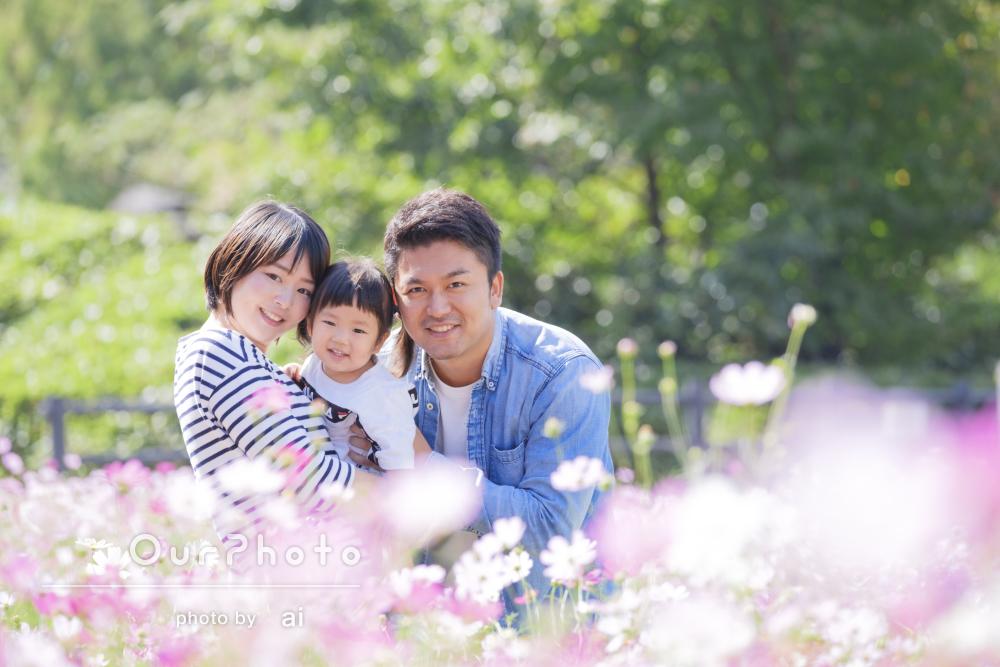 秋の花々がとっても綺麗!楽しそうな笑顔が印象的な家族写真の撮影