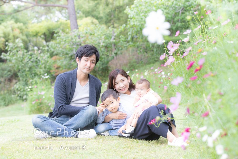「希望ピッタリの場所」でコスモスが秋らしい緑の中での家族写真の撮影