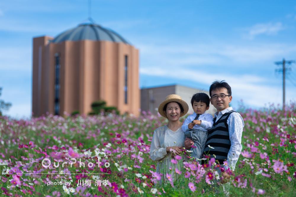 「またお願いしたい」秋晴れのコスモス畑でご家族の撮影
