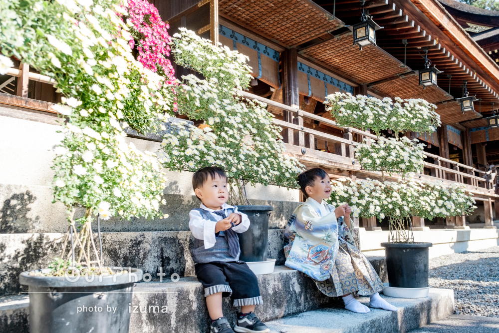 温かい陽だまりで季節の花に囲まれて!5歳の七五三の撮影
