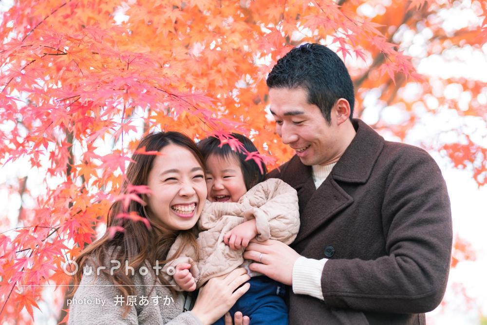 雲にも手が届きそう!橋のある公園で家族のお出かけ撮影