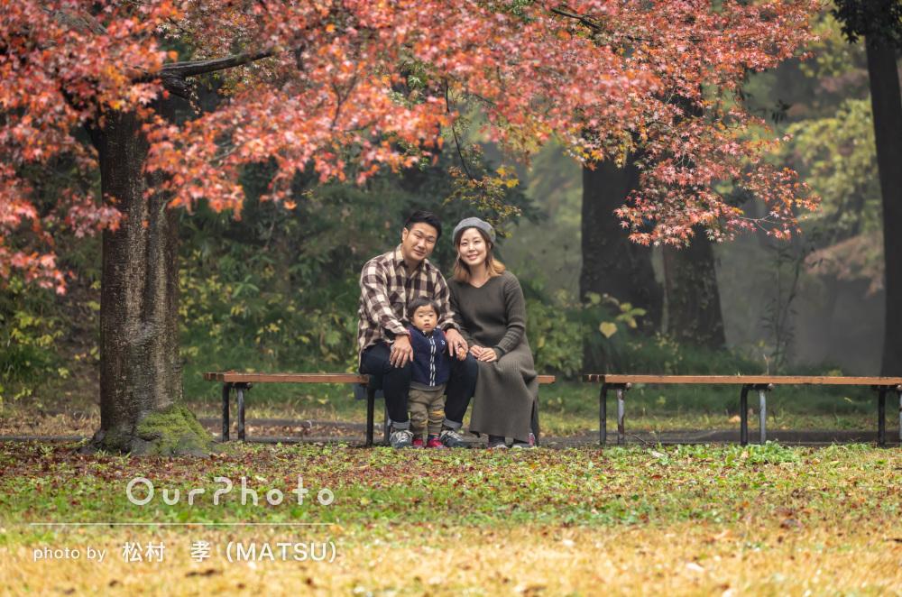 紅葉が美しい秋の公園でロケーション!絵画のような家族写真の撮影