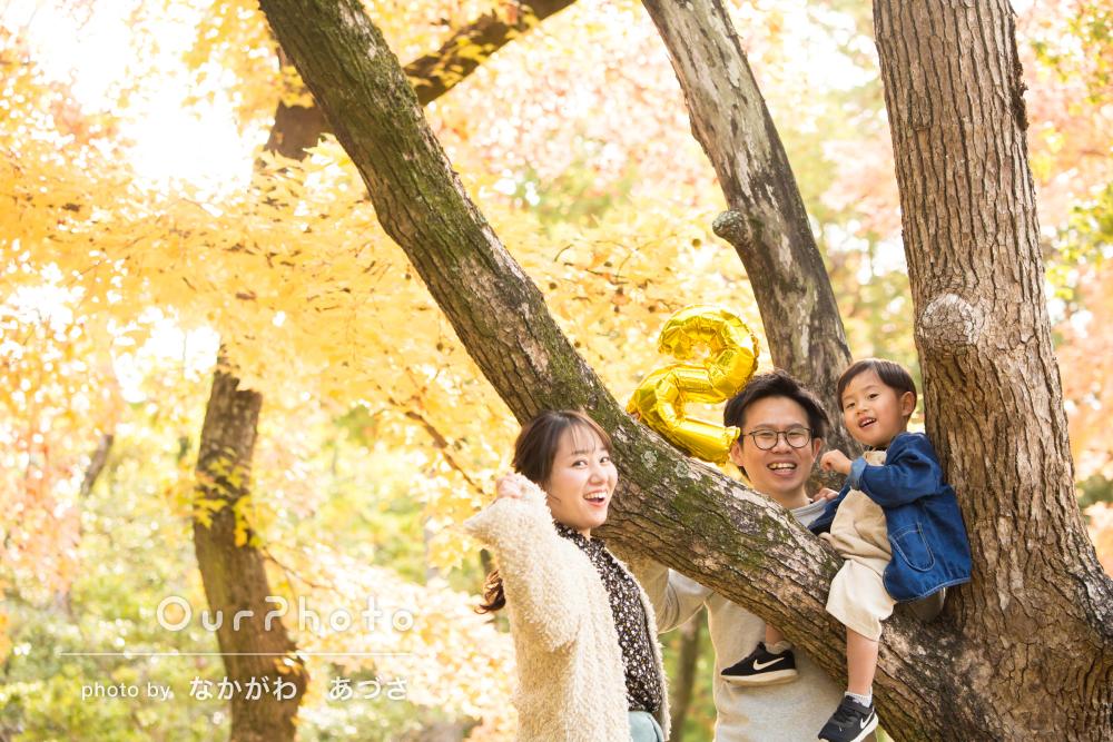 「明るく朗らかな雰囲気」2歳のバースデー記念に公園でご家族の撮影