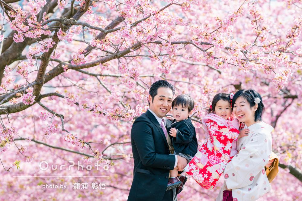 「いろいろな表情を撮って」河津桜と菜の花に囲まれた春の七五三前撮り