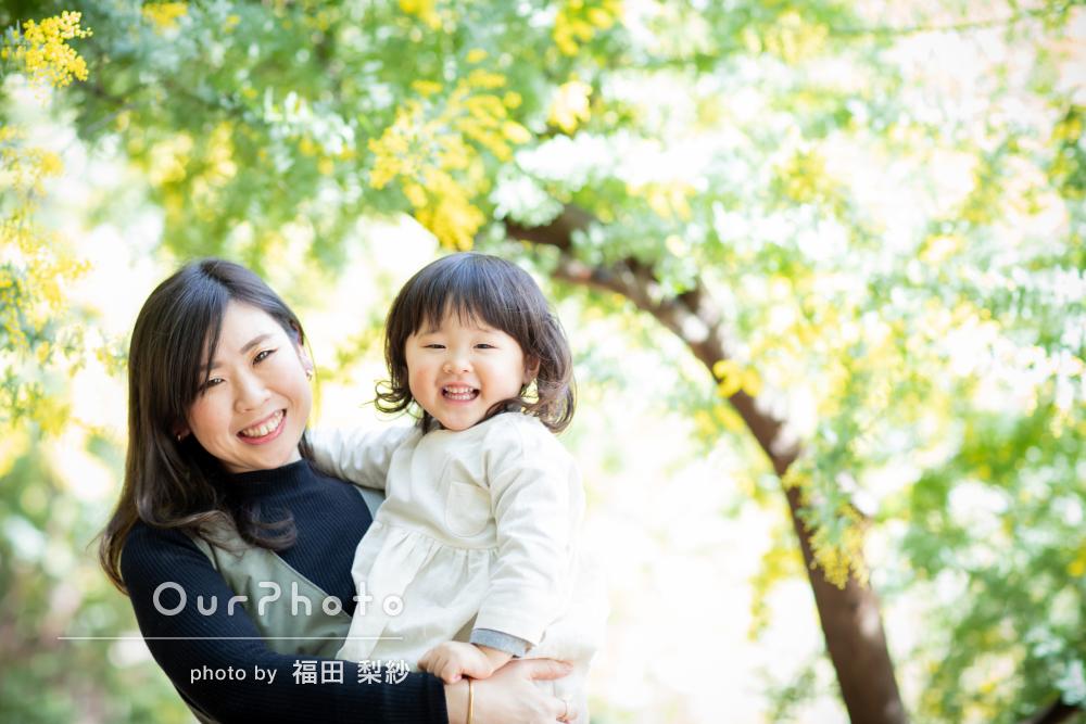 ミモザと桜の春の花の下で母娘3代のあたたかな家族写真を撮影