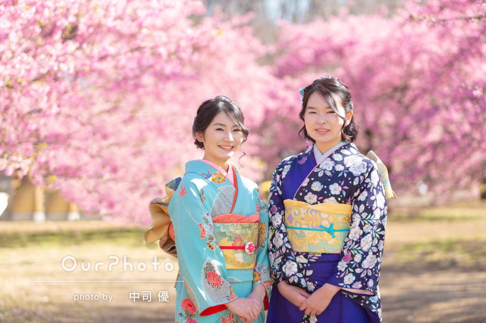 満開の河津桜の下で振袖姿を「初心者でも安心」姉妹で成人式の後撮り