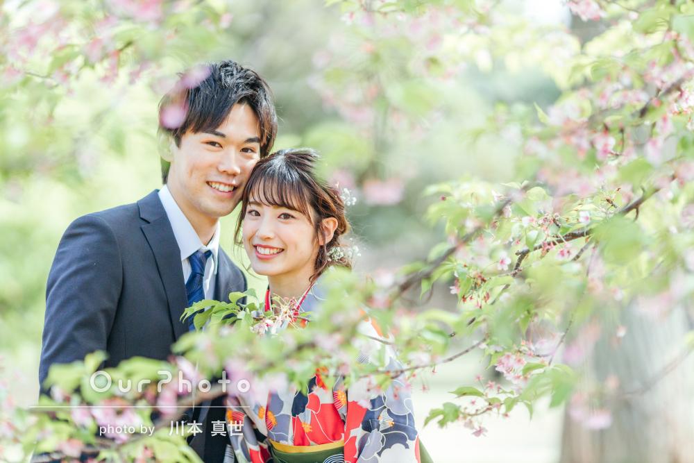 「出来栄えを確認しながら撮影」桜の下で卒業記念のカップルフォトの撮影