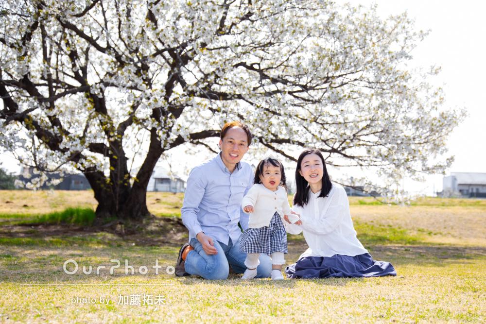 「流石プロ、とても素敵に撮って下さいました」桜と共に家族写真の撮影