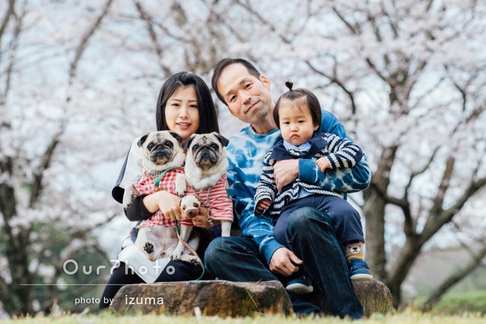 「とても想い出に残る撮影でした」息子さんと愛犬が可愛い家族写真の撮影