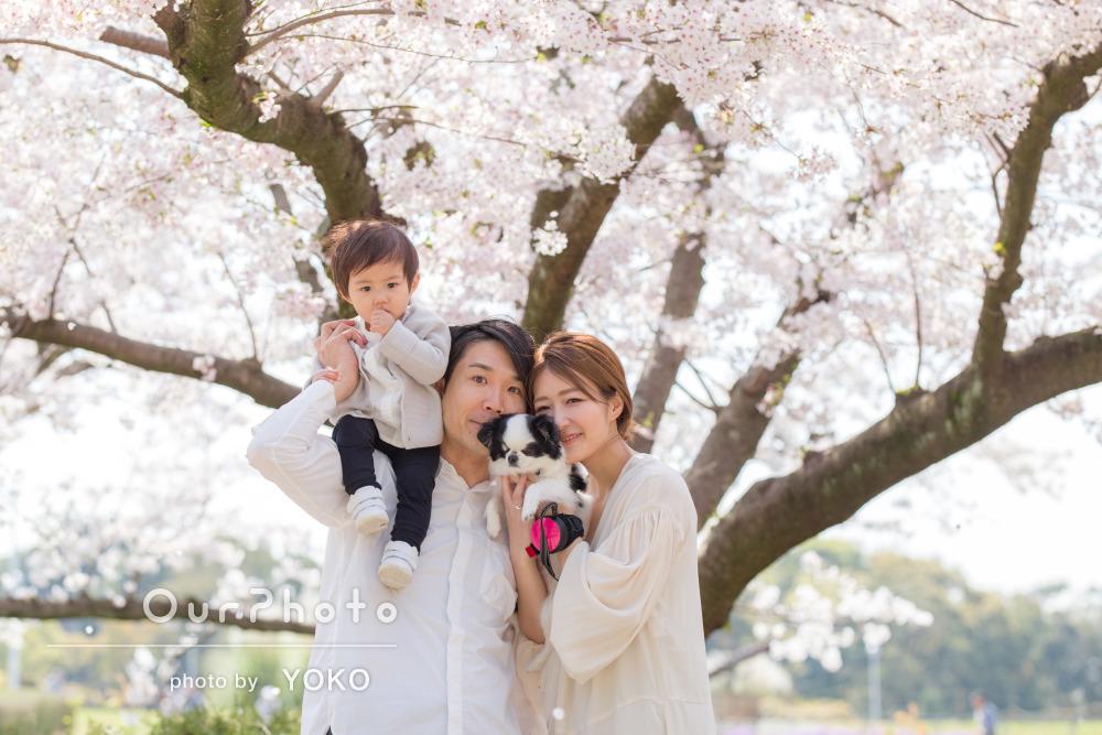 「息子や愛犬にも積極的に声がけして撮影」花咲く公園で家族写真の撮影