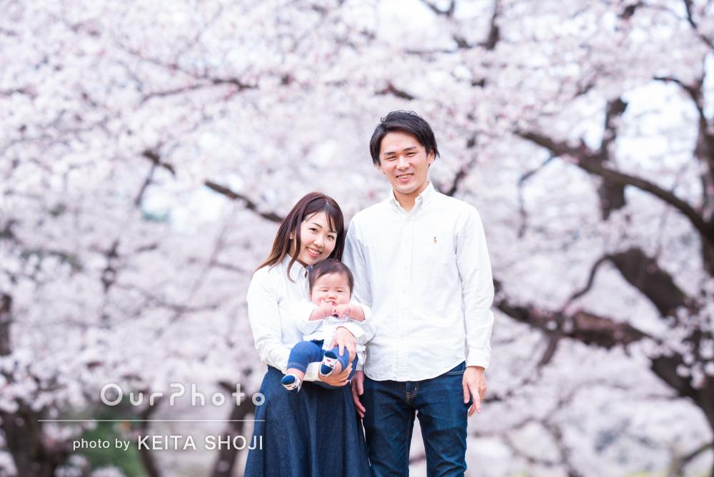 「とても素敵な写真を撮影」桜が満開の公園でハーフバースデイの撮影