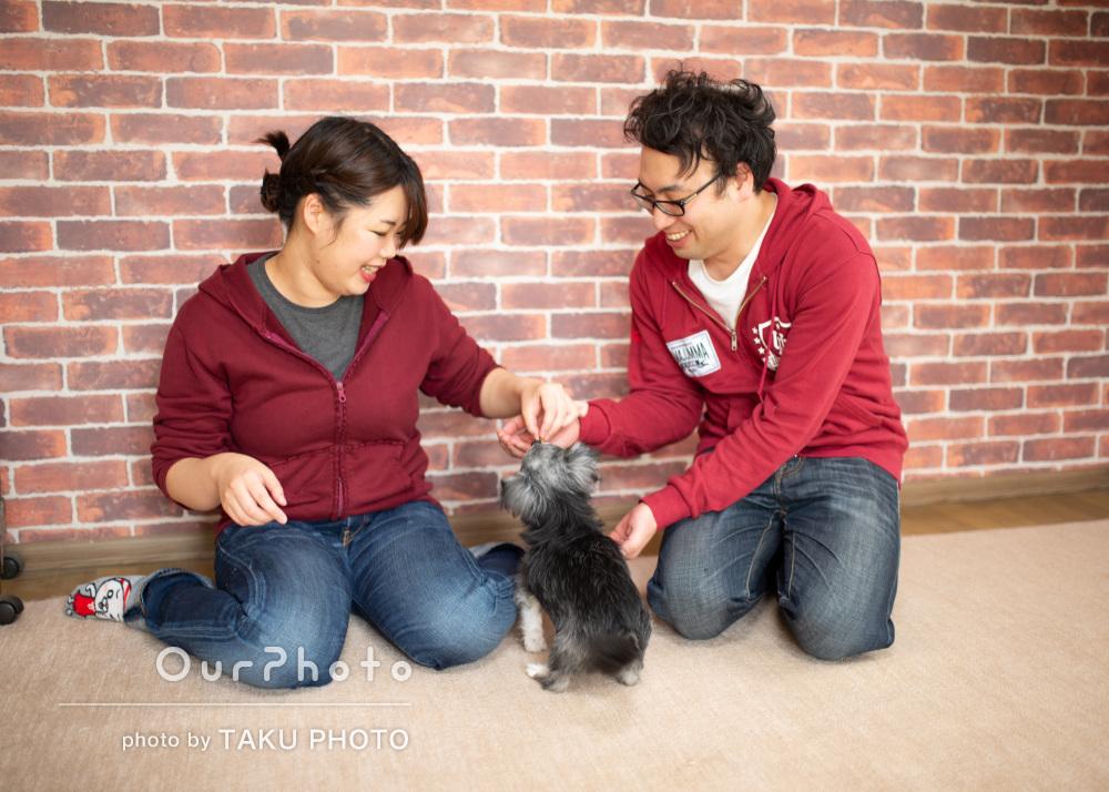 「終始穏やかで楽しい撮影でした」ペットと一緒に家族写真の撮影
