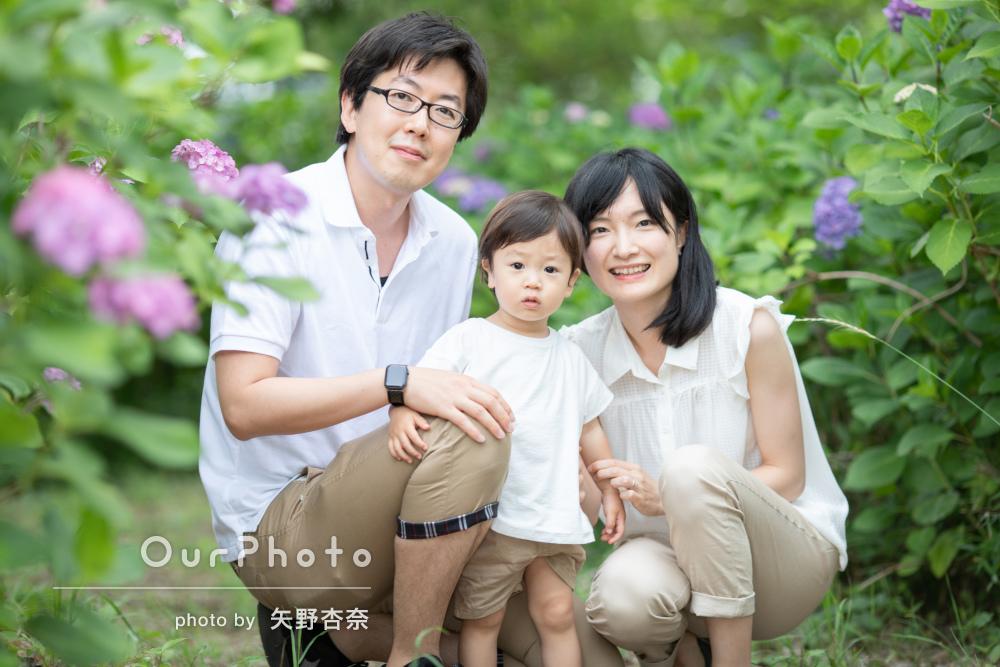 「自由に遊んでいる姿もたくさん」初夏らしい緑の中で家族写真の撮影