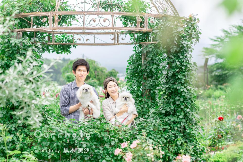 「素敵な写真に感極まってウルウルしてしまいました」家族写真の撮影