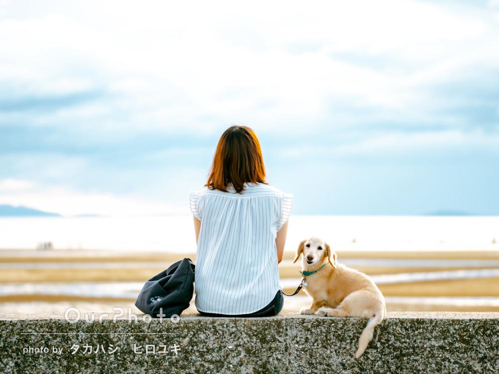 「どれも素敵なアングル」海辺で思い出いっぱいなペット写真の撮影