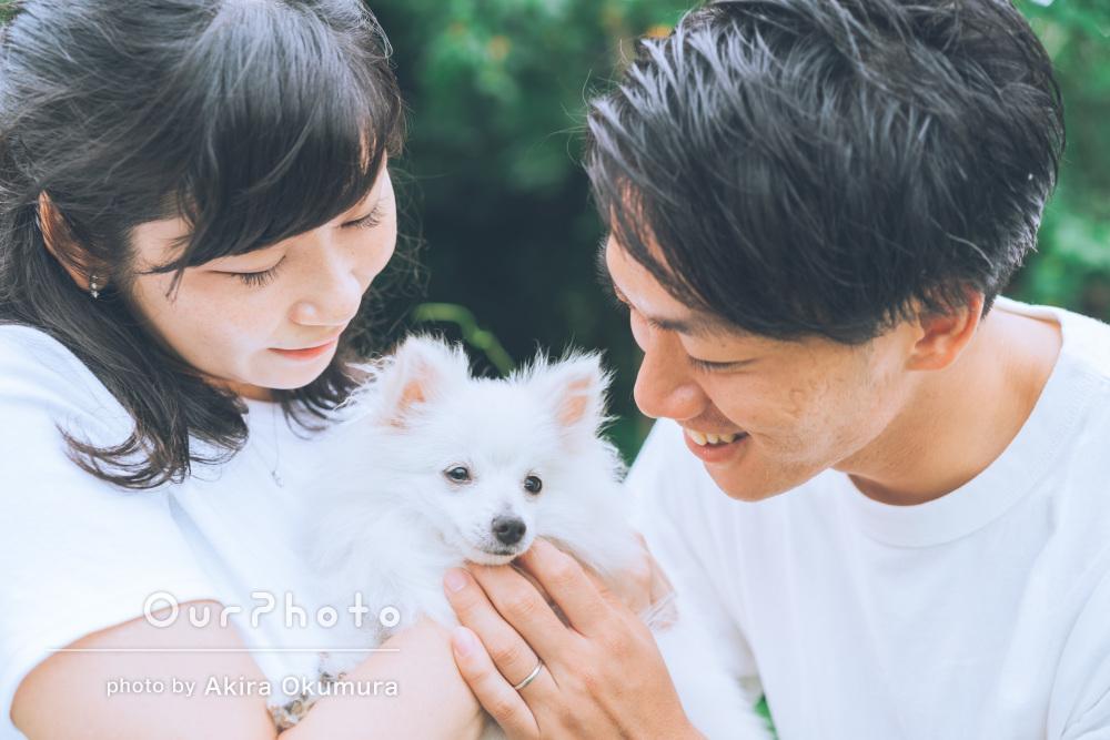 ふわふわでかわいらしい!家族写真としても素敵なペット写真の撮影