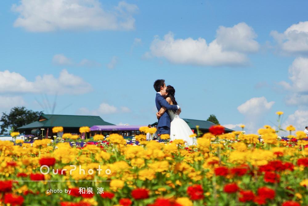 「とても楽しく撮影」「ポーズもいろいろ」北海道の花畑でウェディングフォト