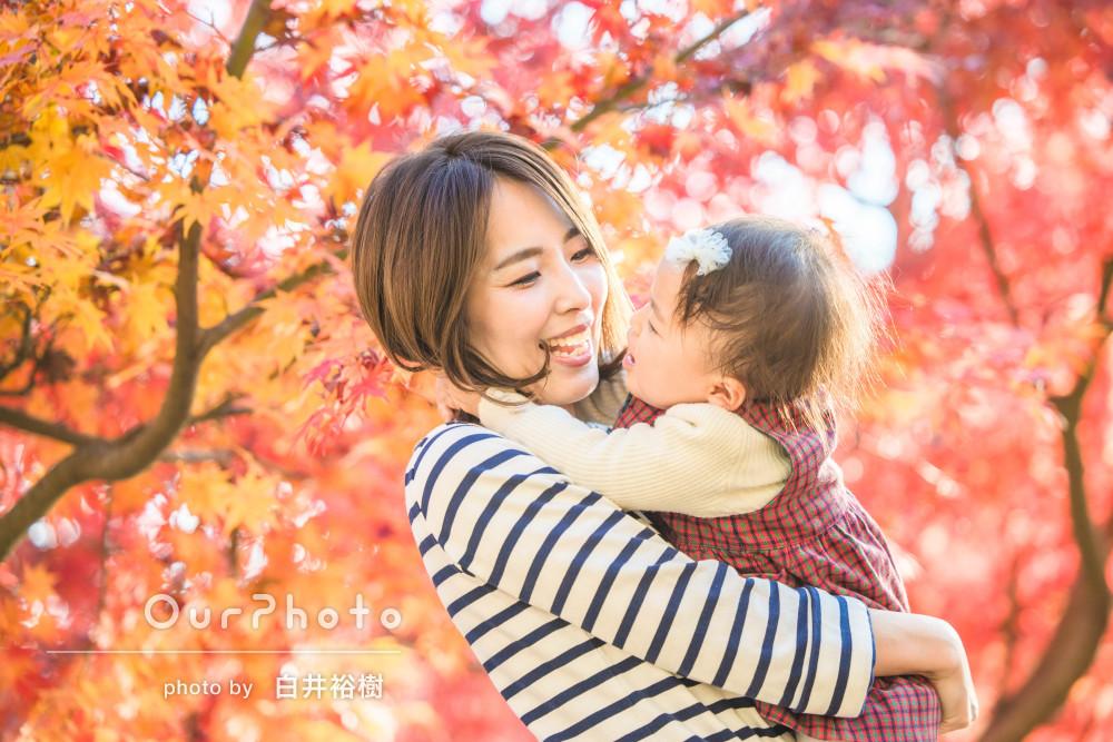 「素敵な写真をたくさんありがとう」秋の公園で2歳誕生日に家族写真撮影