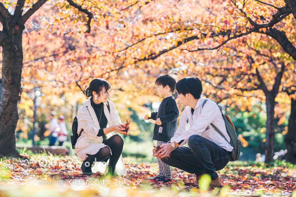 「葉っぱや土にまみれながらもベストショットを」公園で家族写真の撮影