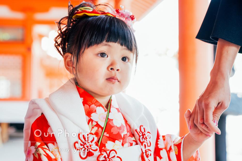 兄妹の和装姿が色鮮やかで華やかな七五三写真の撮影