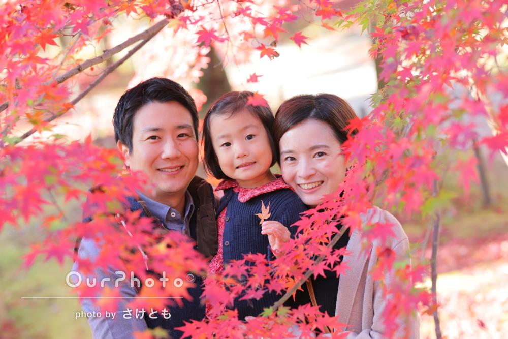 「仕上がりはいつも期待以上でとても満足」紅葉が美しい家族写真の撮影