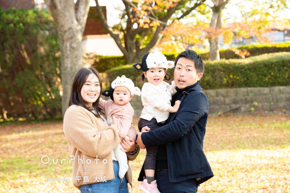 牛さん姿に大変身!かわいい姉弟の姿がいっぱいな家族写真の撮影