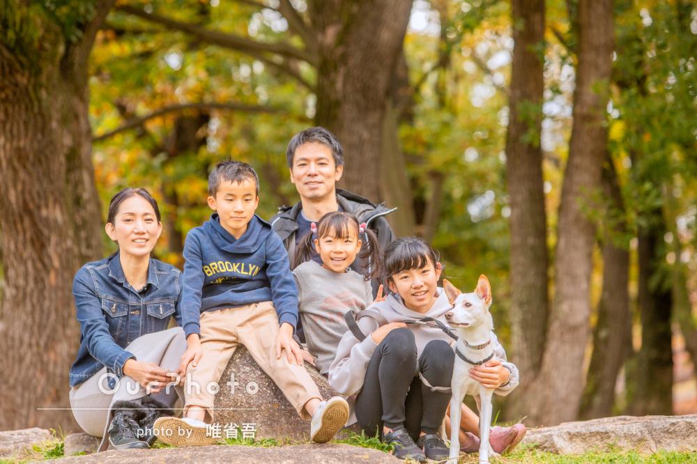 「にぎやかな年賀状ができそうです!」愛犬とユニークな家族写真の撮影