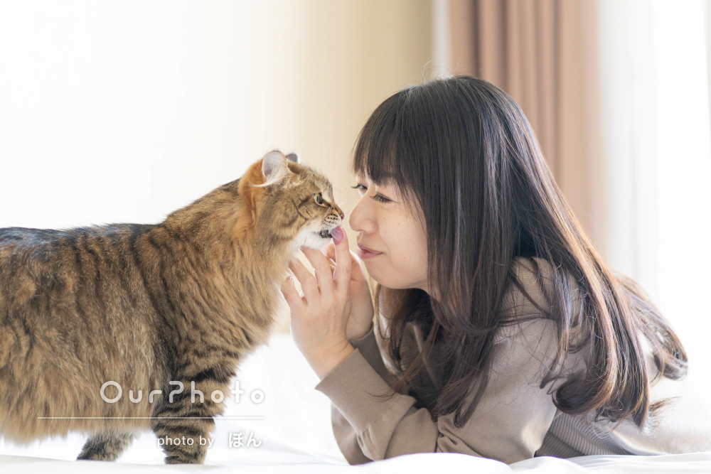 「光の捉え方がとても素敵」猫ちゃんと一緒に女性プロフィール写真の撮影