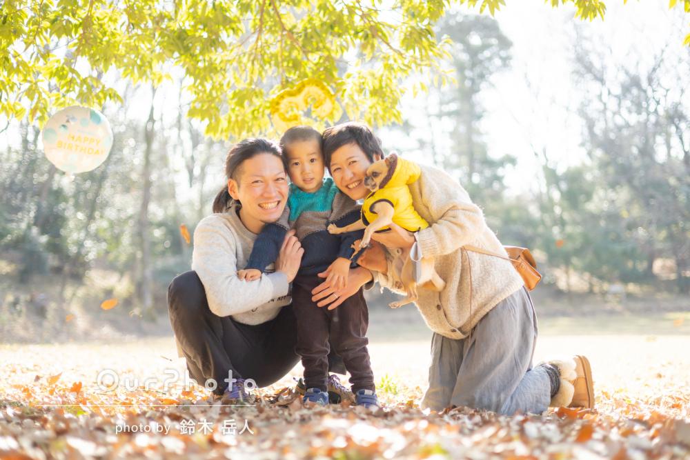 「木漏れ日の中で色々な撮影ポイントを提案」3歳記念に家族写真の撮影