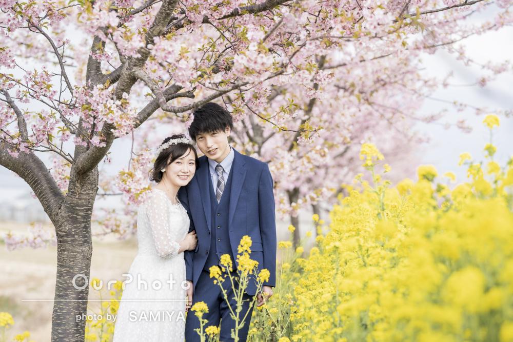 「楽しく撮影」桜と菜の花が満開の並木道でウェディングフォトの撮影