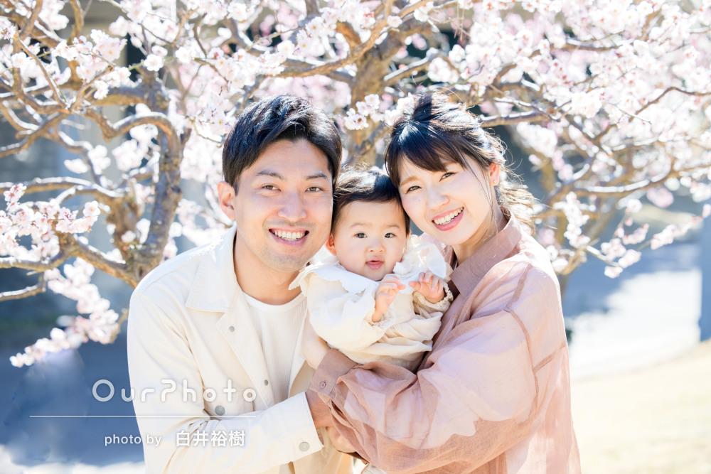 「ほんと素敵な写真ばかり」1歳の誕生日記念に家族写真の撮影