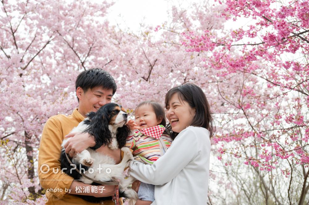 「素敵な写真を撮影することができ、大変満足しています」家族写真の撮影