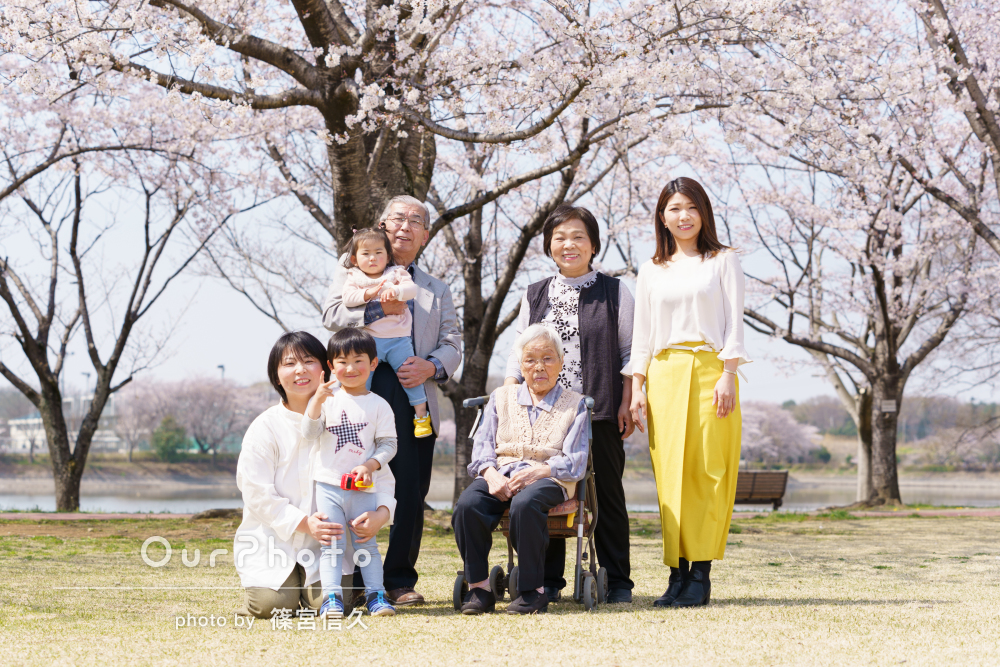 大きな桜の木の下でみんな笑顔!いろんな組み合わせで家族写真の撮影