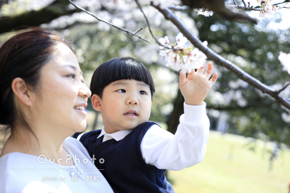 「この度はありがとうございました」桜のある公園で家族写真の撮影