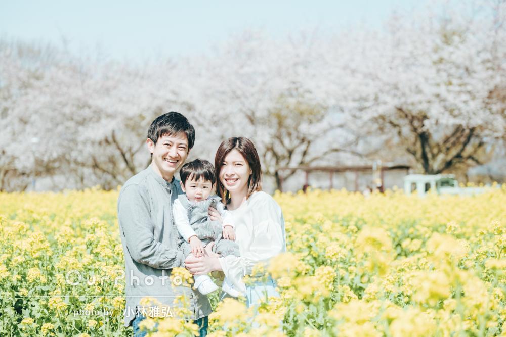 「自然体でたくさんいい写真」リピーターさんの春爛漫な家族写真の撮影