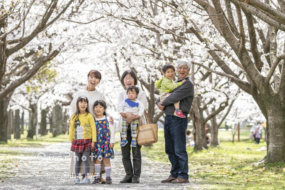 「わちゃわちゃなりながらも終始穏やかで」桜の下で家族写真の撮影