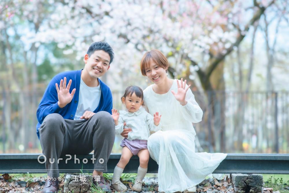 「とても良い記念になりました」桜の下でピクニック!家族写真の撮影