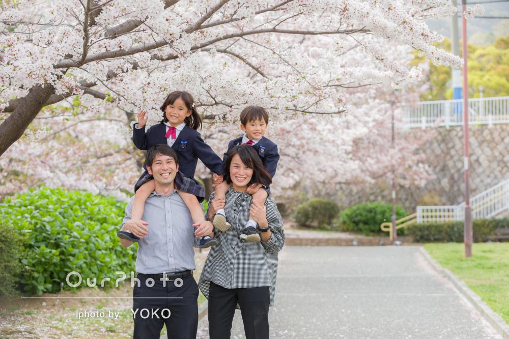 「遊びながら楽しく自然体なお写真」満開の桜の中で家族写真の撮影