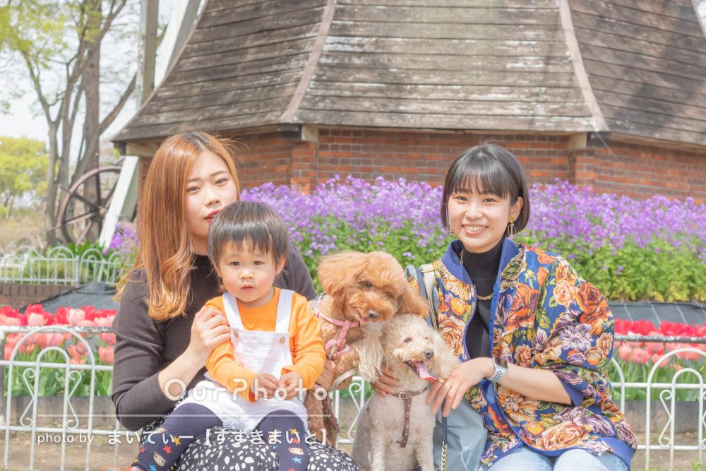 「たくさんいいのがありました」可愛い二匹の愛犬とペット写真の撮影
