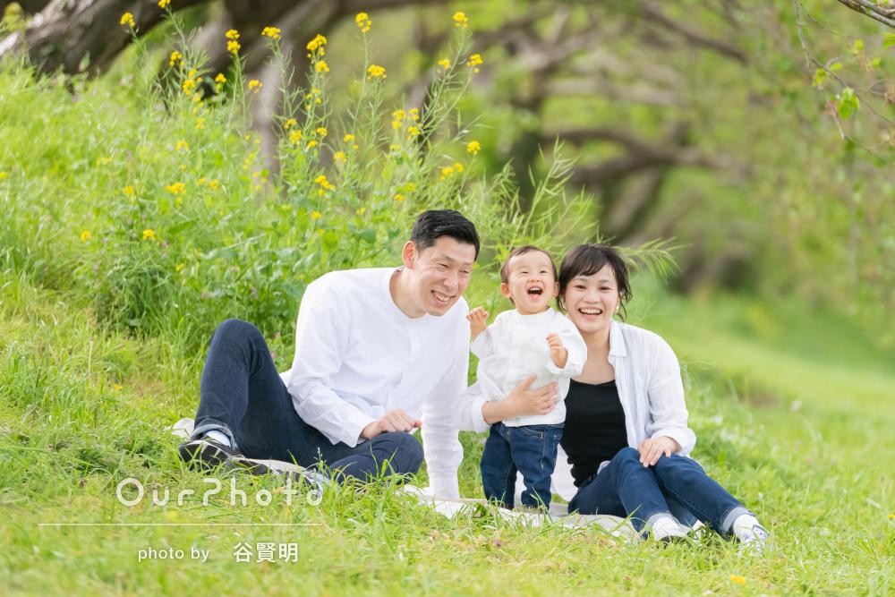 緑いっぱいの公園でお誕生日のお祝い!ナチュラルな家族写真の撮影