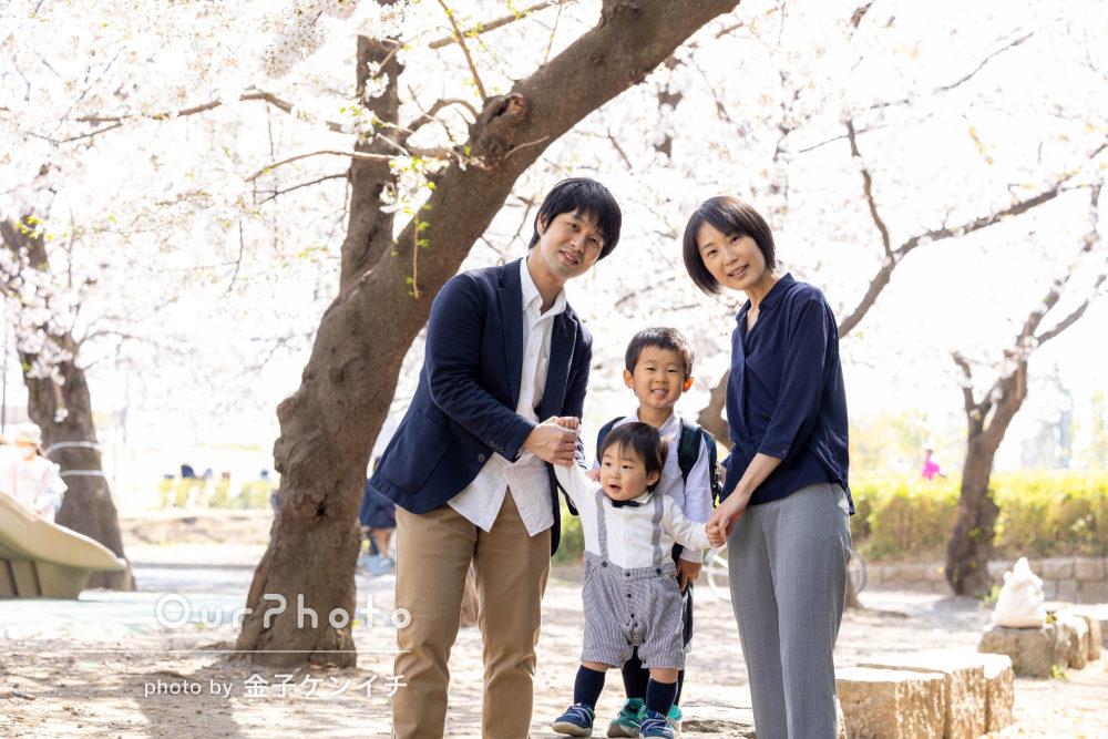 「時間いっぱい色々なショットを」桜の木の下で家族写真の撮影