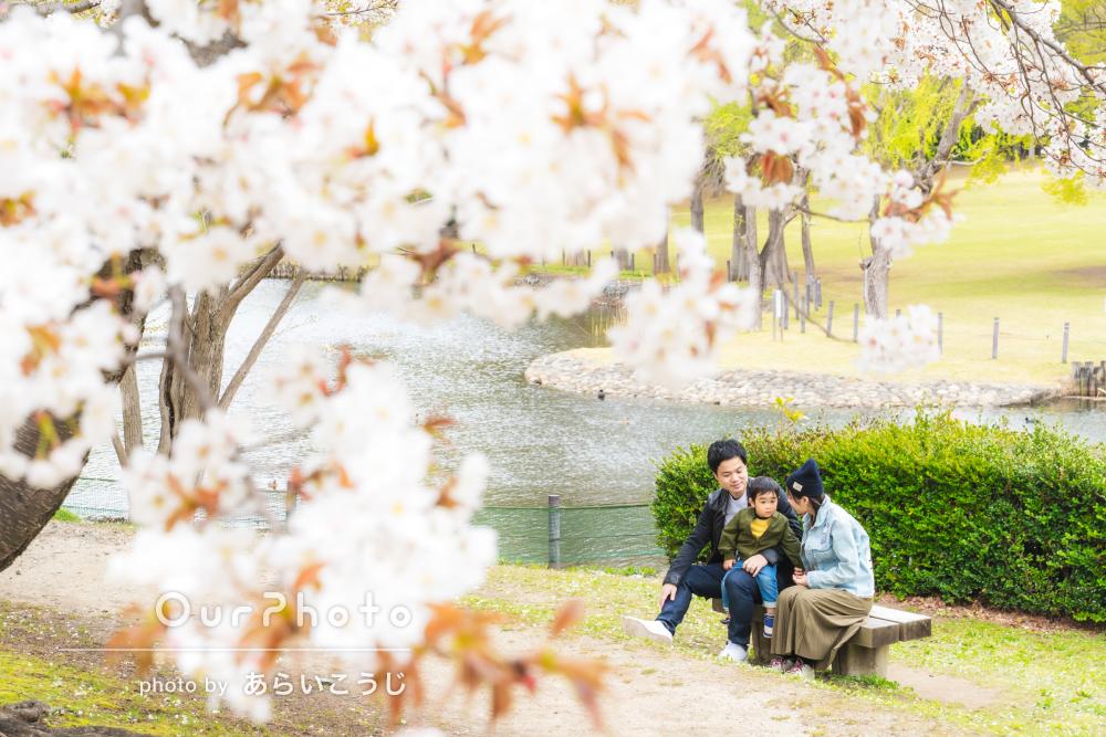 「色んなアングル、場所から様々な写真を」春の公園で家族写真の撮影