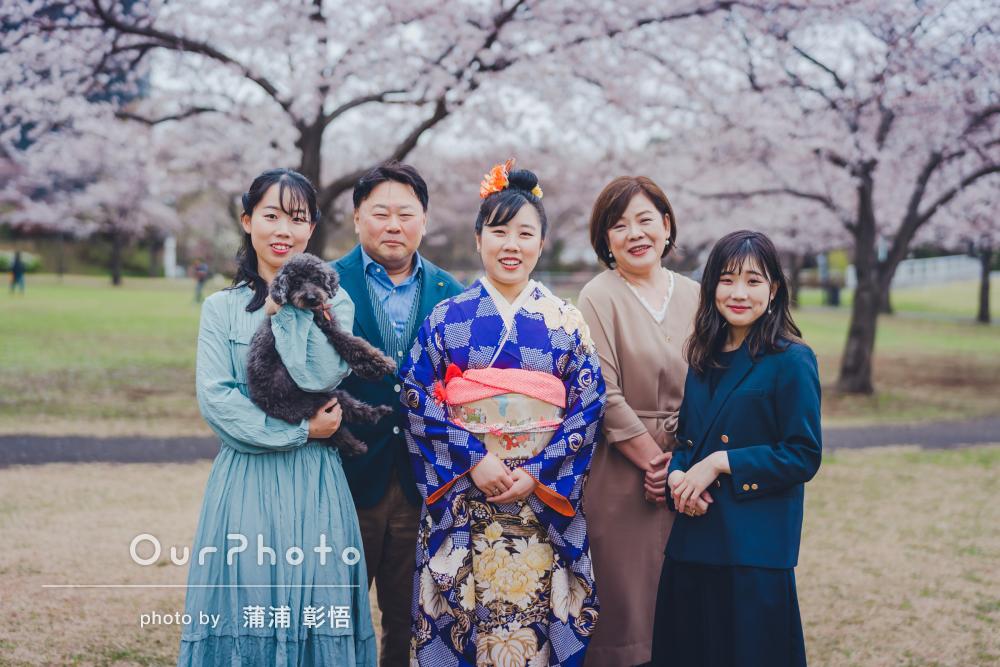 桜を背景に振袖の鮮やかなブルーが映える!家族と一緒に成人式の撮影