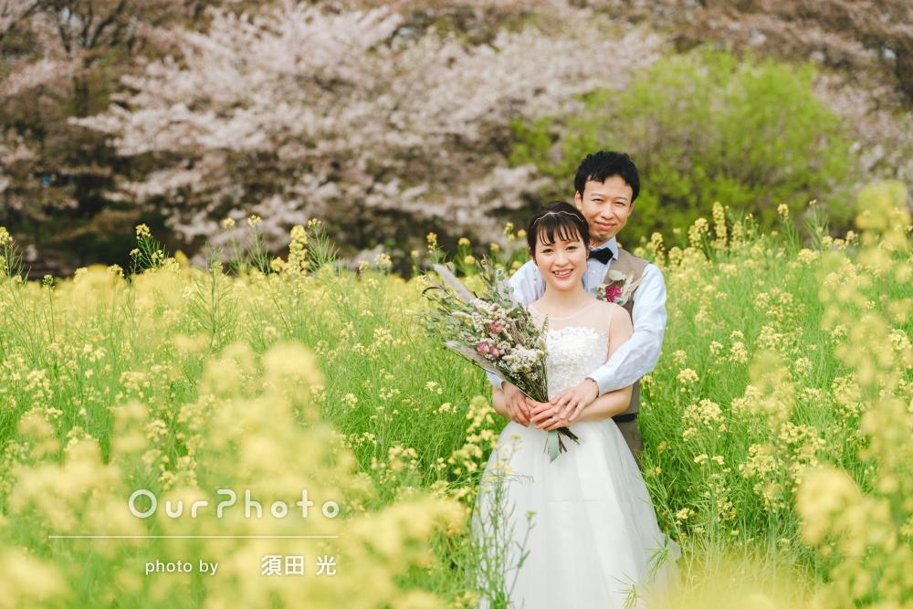 「どの写真も素敵に撮影」桜並木と菜の花畑でウエディングフォトの撮影