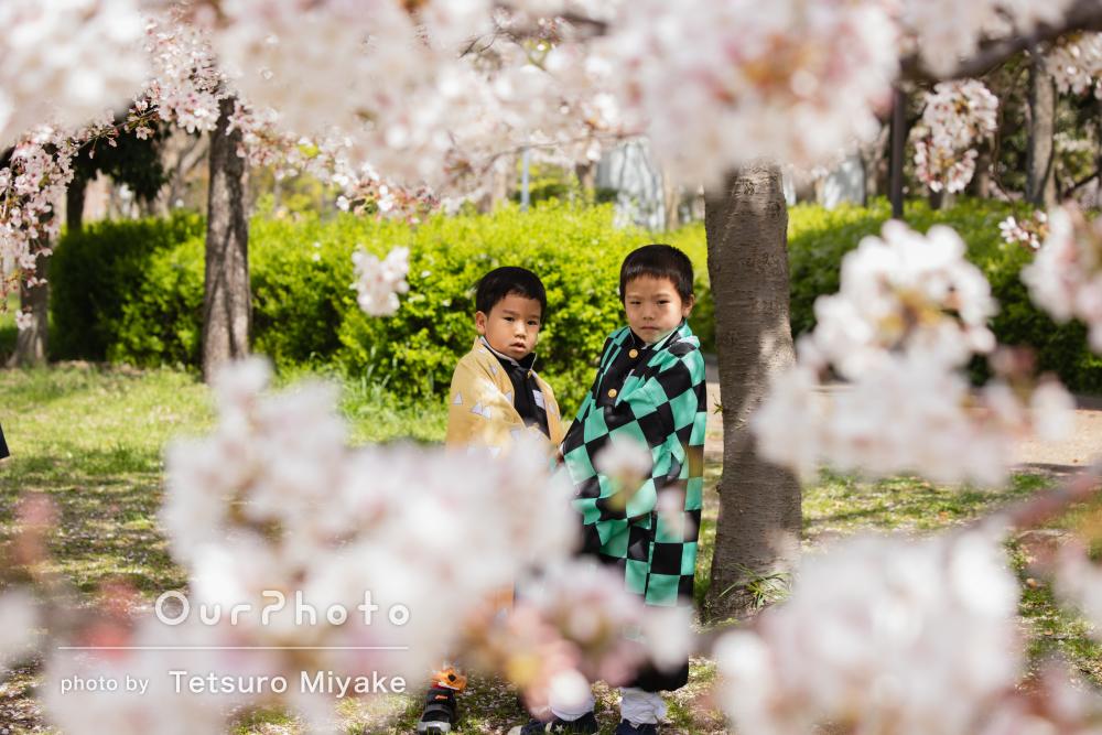 「終始リラックスした雰囲気」桜の下で入学記念の友フォトの撮影