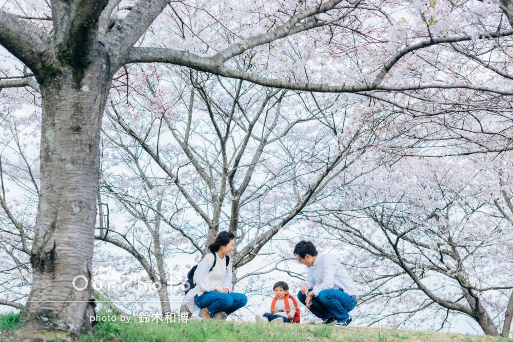 「イメージ通り、いやそれ以上の写真がたくさん!」春満開家族写真の撮影